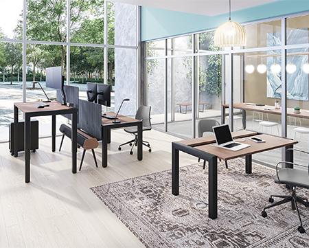 pr-elle-family-open-office